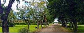 Cemitério Jardim das Flores – Cotia