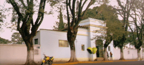 Cemitério São Salvador – Mogi das Cruzes