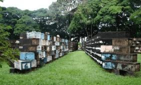 Cemitério Parque da Saudade