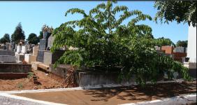 Cemitério Parque das Colinas Verdes