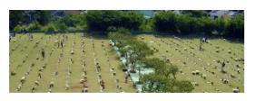 Cemitério Parque dos Pinheirais – Mauá