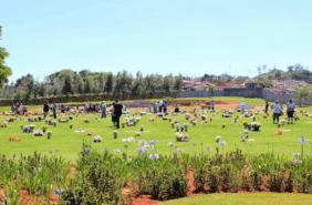 Cemitério Memorial Jardim do Redentor