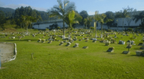 Cemitério Parque Crisântemos Itajaí – SC