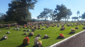 Cemitério Parque Jardim do Eden Chapecó – SC