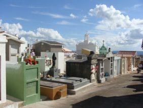 Floricultura Cemitério Municipal de Caçapava