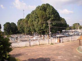 Cemitério Municipal de Moju – PA