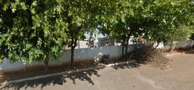 Cemitério Municipal de Palestina do Pará – PA