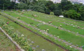 Cemitério Jardim Horto Florestal – SP –