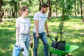 O que fazer para o Dia do Meio Ambiente: Adoção de uma praça