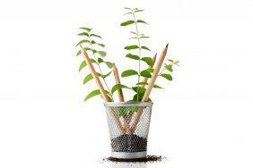 O que fazer para Sustentabilidade: Lápis com semente na ponta
